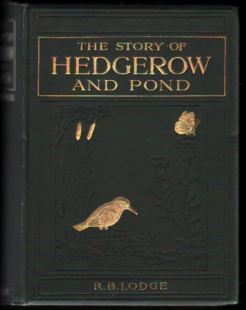 Image for The Story of Hedgerow and Pond.
