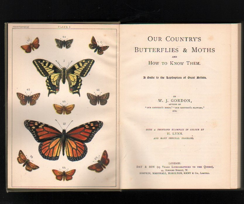 Image for Our Country's Butterflies and Moths and How to Know Them.