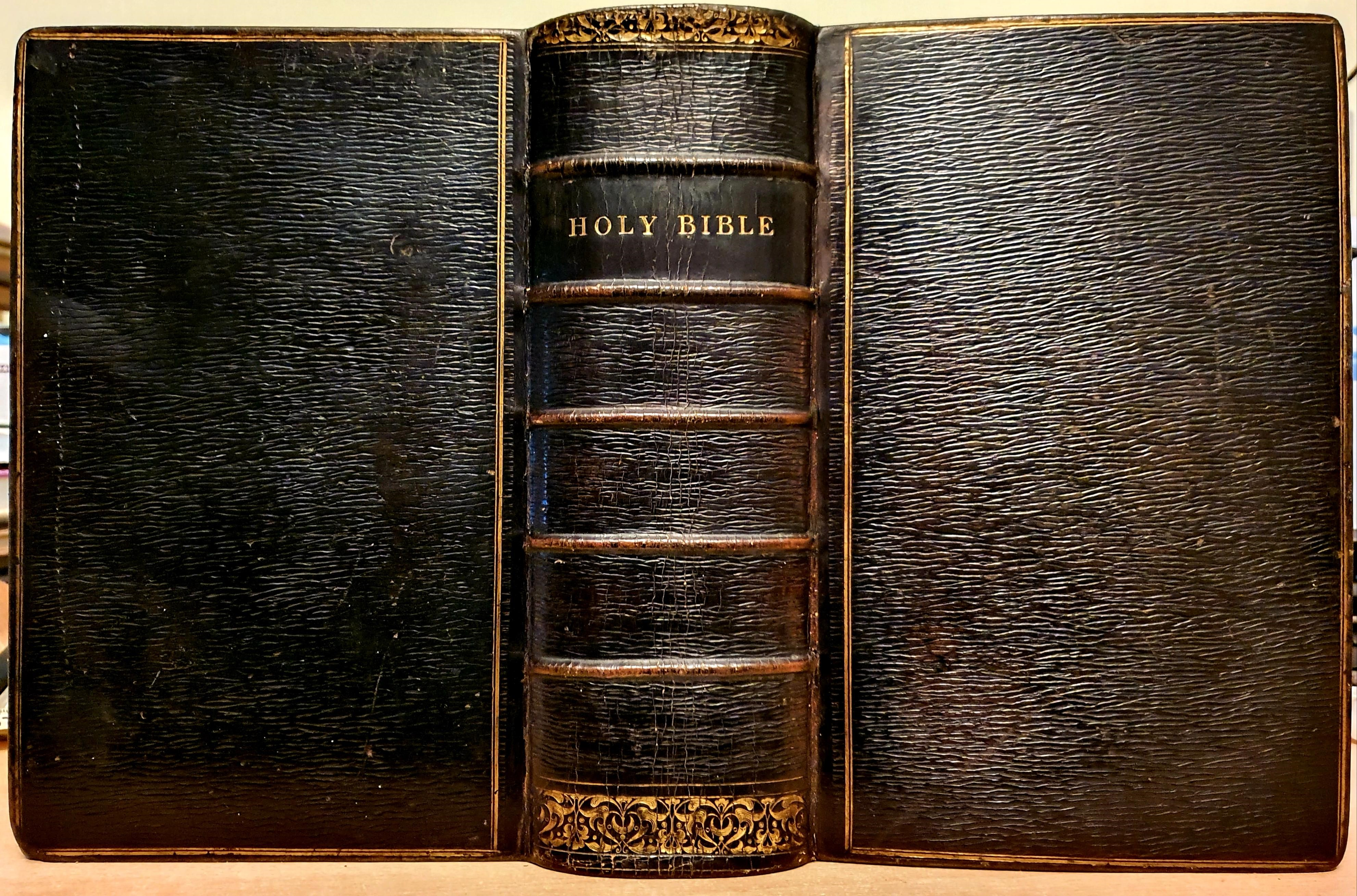 Image for The Holy Bible, Containing The Old And New Testaments: translated Out Of The original Tongues: And With The Former Translations Diligently Compared And revised. By His Majesty's Special Command. Appointed To Be Read In Churches.