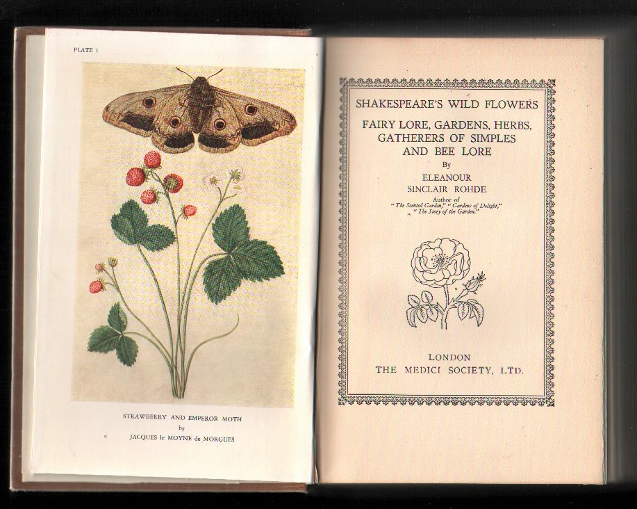 Image for Shakespeare's Wild Flowers: Fairy Lore, Gardens, Herbs, Gatherers of Simples and Bee Lore.