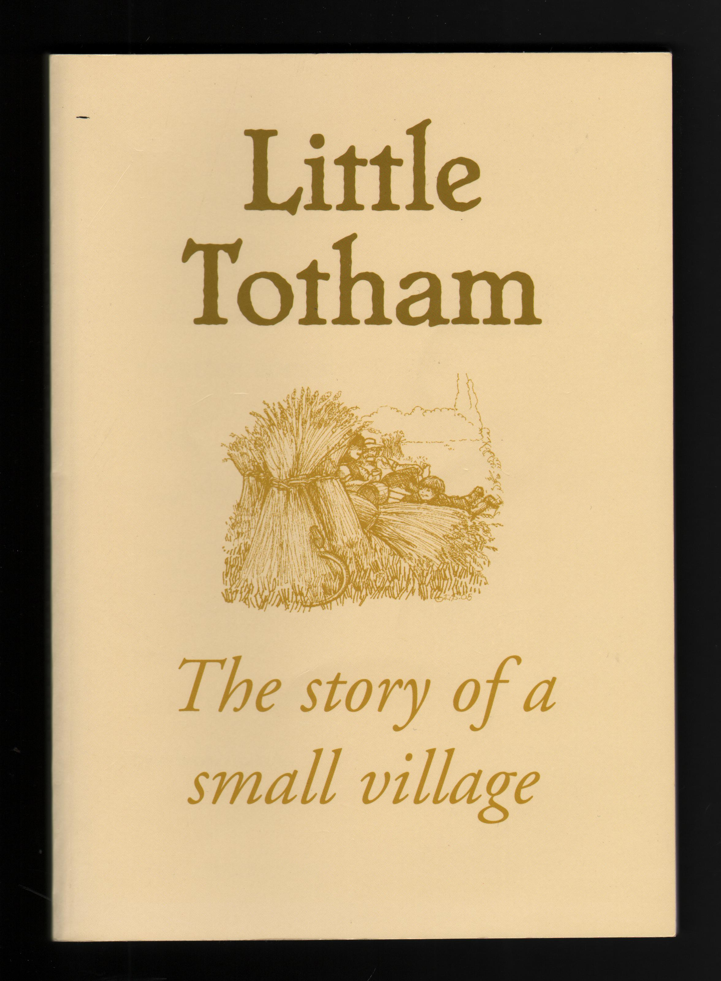 Image for Little Totham: The Story of a Small Village.