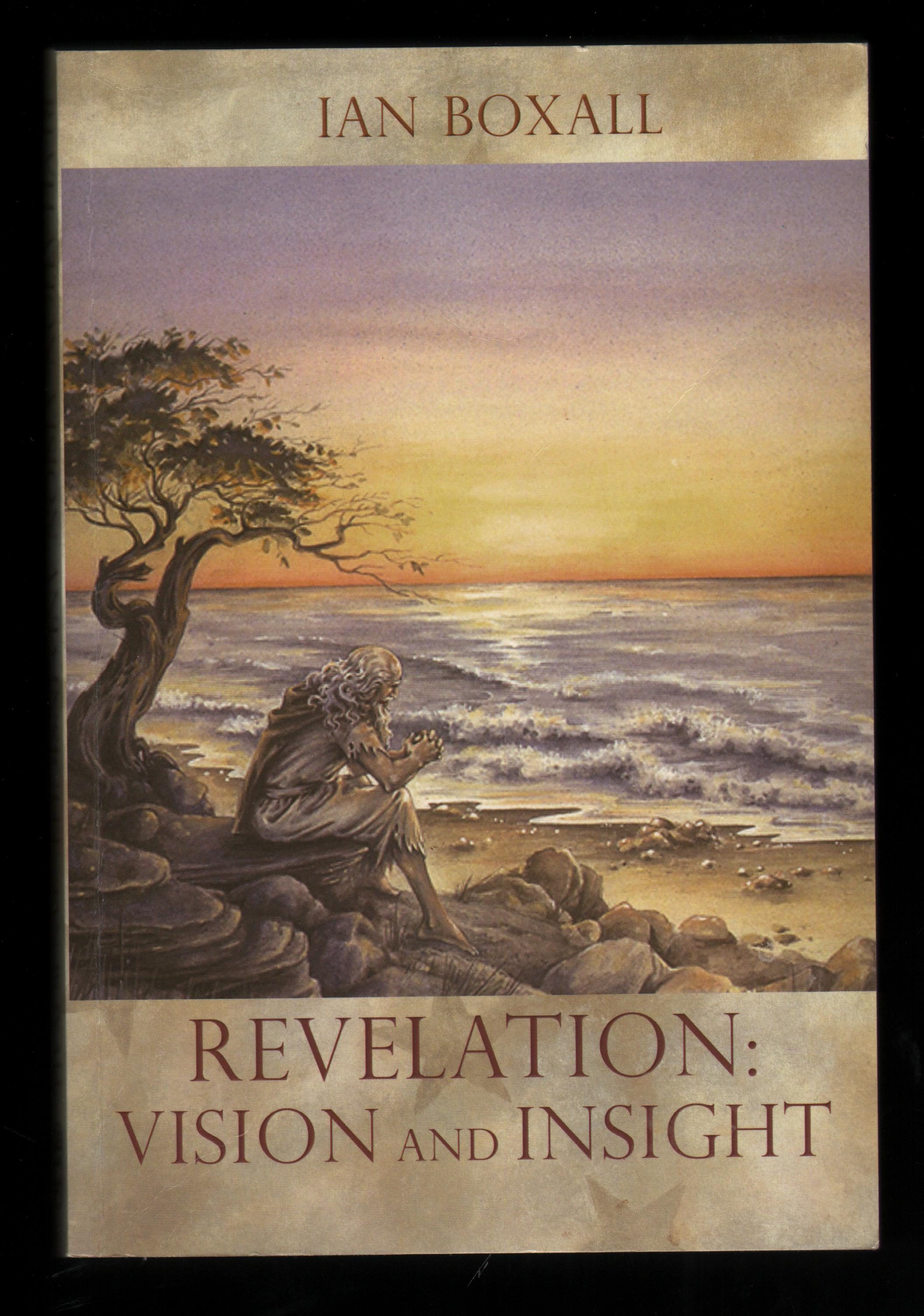 Image for Revelation: Vision and Insight. An Introduction to the Apocalypse.
